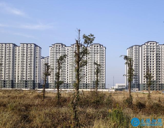 """越来越多人由市区搬到""""郊区"""",趋势如此?其实更多是迫于无奈"""